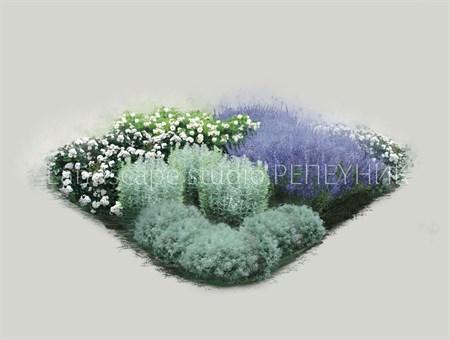 Розарий № 2 Сиреневый туман - фото 6553