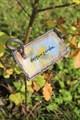Таблички для растений - фото 4996